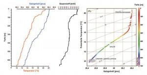 Abb. 4: CTD–Profil (Temperatur, Salzgehalt, Sauerstoff) und ein T-S-Diagramm zum obigen Kastengreifer (NACW = North Atlantic Current Water).
