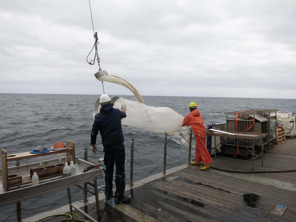 Bongonetz-Einsatz auf Expedition AL437. Foto: Sophia Wagner