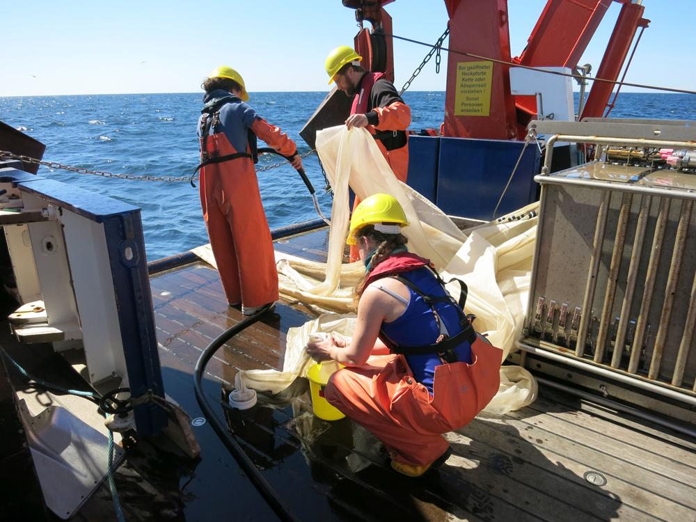 Das Multinetz hat, ähnlich wie der Wassersammler, Netze die auf verschiedenen Tiefen aufgehen. So kann die Artzusammensetzung zum Beispiel mit dem Sauerstoffgehalt verglichen werden. Foto: Sophia Wagner