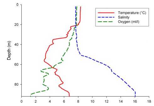 CTD profile in the central Bornholm Basin in May 2012. Temperature, salinity and oxygen content. Figure: Holger Haßlob