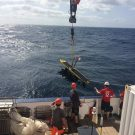 Aussetzen - deployment of the MARUM Waveglider