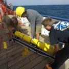Erfolgreiche Bergung des SLOCUM Gleiters -successful recovery of the SLOCUM glider ©Patrick Leibold