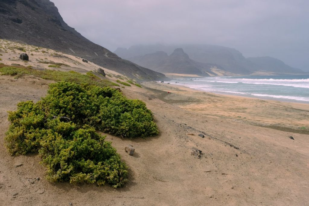 Field trip in the afternoon: the north east coast of São Vicente. Photo: Jan Steffen/GEOMAR