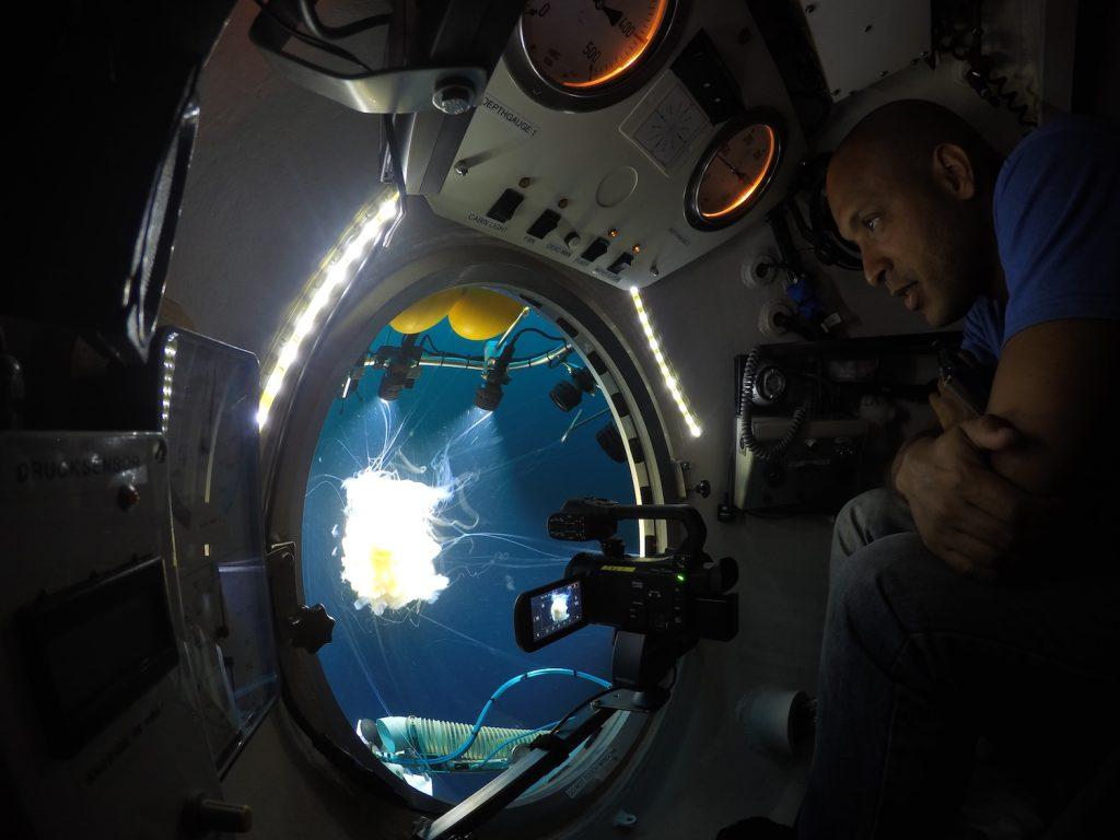 Nuno inside JAGO, watching a egg yolk jellyfish that he and JAGO-pilot Juergen encountered at 60 m depth. / Nuno betrachtet aus dem Tauchboot JAGO heraus eine Qualle, die er zusammen mit JAGO-Pilot Jürgen Schauer in 60 Metern Tiefe entdeckt hat. Photo: Jürgen Schauer/JAGO-Team