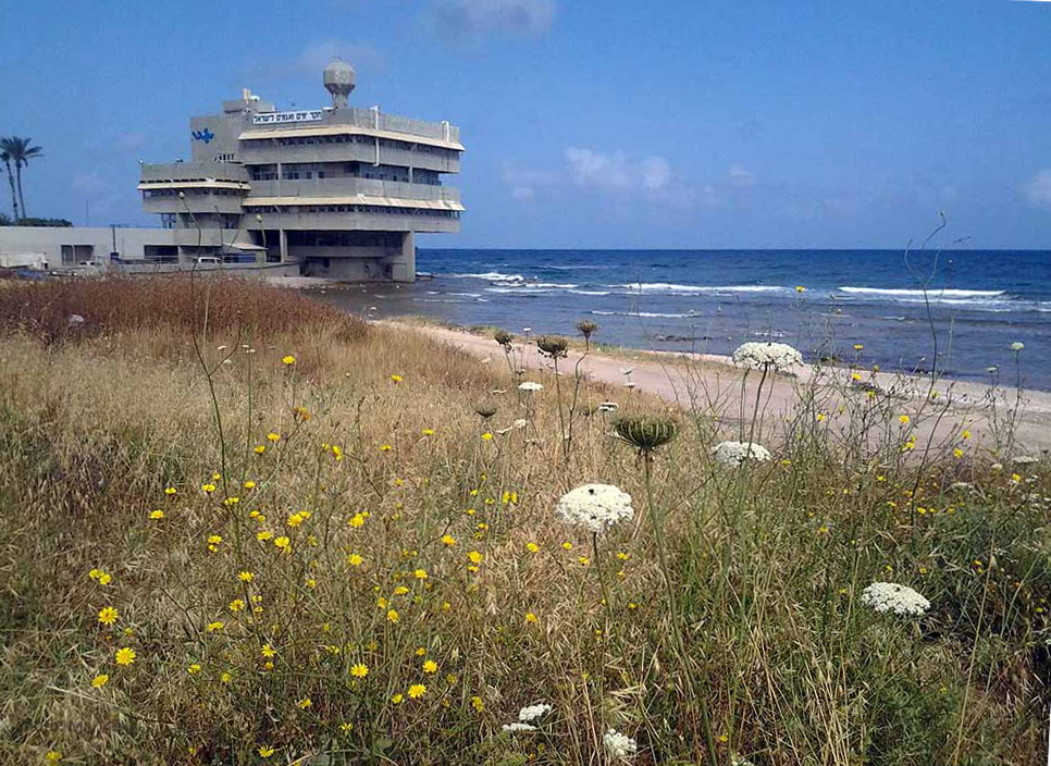 The Israel Oceanographic and Limnological Research (IOLR) Institute.