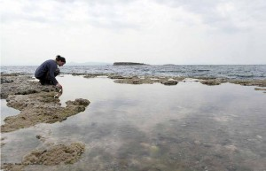 Me looking for anemones in a rock pool.