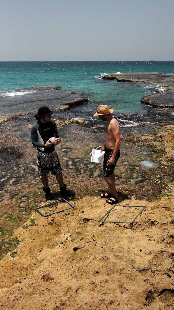 Mapping shore Biodiversity with my colleagues Ohad and Erez.