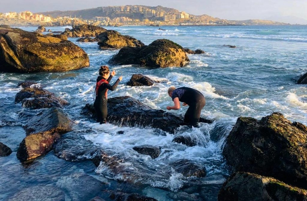 Searching for the mussels in Totoralillo (Photo: Frieda Wölke)