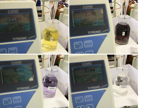 Color change during oxygen titration. From picture top left to top right then bottom left to right (photograph by Angela Stippkugel).