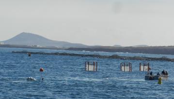 Verankerung des Tiefenwassersammlers bei den Mesokosmen. Foto: Constanze Bückner