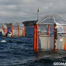 Anyone seasick? Noooo! Photo: Maike Nicolai, GEOMAR