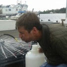 a matter of taste KOSMOS Bergen mesocosms ocean acidification