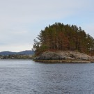 Island on the way to the mesocosms. Photo: Lara Schmittmann