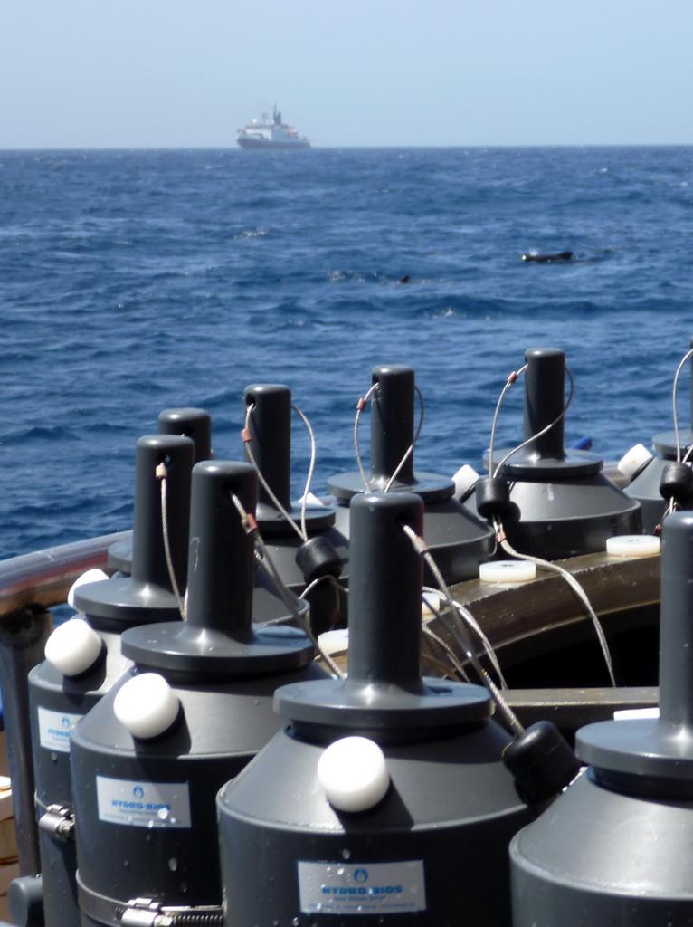 CTD-Panorama mit Walen und POLARSTERN. Bild: Sunke Schmidtko