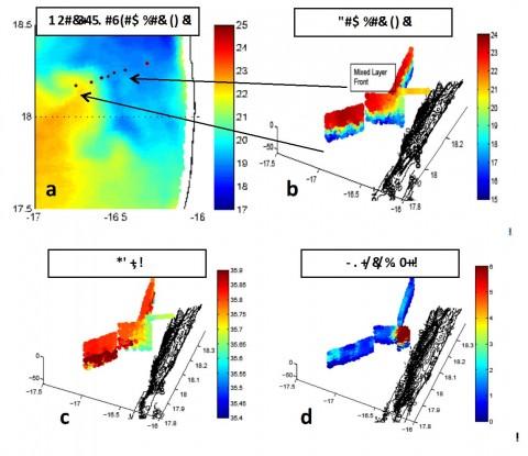 Abb. 2a-c: (a) In der Oberflächentemperatur (MODIS, Auflösung: 1 km) zeigt sich eine klare submesoskalige Front, welche sich Richtung Küste durch das Hauptarbeitsgebiet zieht. Echtzeitgleitermessungen von Temperatur- (b), Salz- (c) und Chlorophyllverteilung entlang der submesoskaligen Front.
