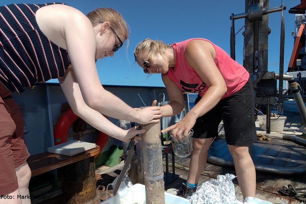 Der Inhalt der Stechrohre wird nach Tiefenhorizonten aufgeteilt und diese werden dann einzeln in Glasgefäße überführt. Foto: Mark Lenz/GEOMAR