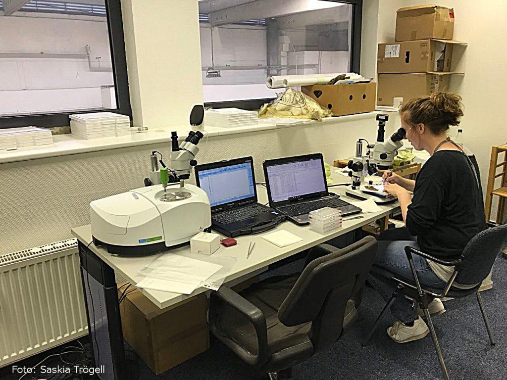 Ivy Harms bestimmt am FT-IR-Spektroskop aus welchen Polymeren die gefundenen Partikel bestehen. Foto: Saskia Trögell