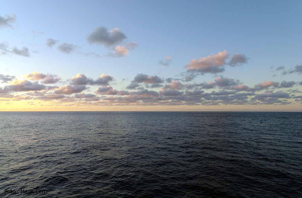 Der nordatlantische Müllstrudel auf den ersten Blick. Wie Sie sehen, sehen Sie nichts. Erst bei genauem Hinsehen entdeckt man kleine Plastikpartikel auf der Wasseroberfläche. Foto: Mark Lenz/GEOMAR