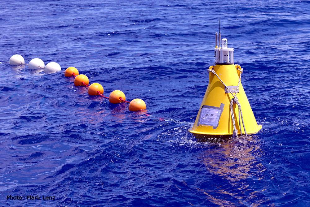Die ausgesetzten Fallen treiben davon. Mehrere Schwimmkörper halten das Seil in der Wassersäule und eine gelbe Boje mit einem Sender und einem Blinklicht markieren die driftende Konstruktion. Foto: Mark Lenz/GEOMAR