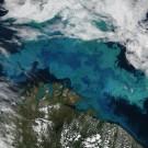 Kalkalgenblüte in der Barents See, aufgenommen mit dem Moderate Resolution Imaging Spectroradiometer (MODIS) auf dem NASA-Satelliten AQUA. Foto: Jeff Schmaltz, MODIS Rapid Response Team at NASA GSFC / NASA's Earth Observatory