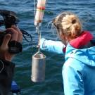 Rosanna lässt ein Planktonnetz zu Wasser. Foto: Maike Nicolai, GEOMAR