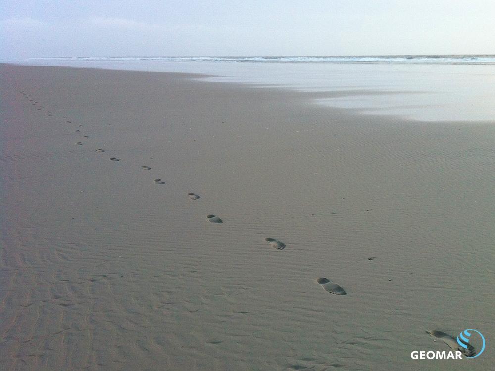 Fußspuren am Strand. Foto: Maike Nicolai, GEOMAR