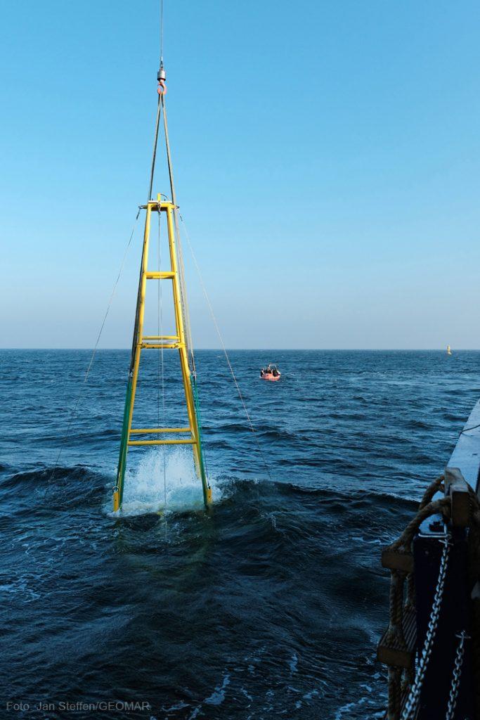 ... und schlicßlich ins Ostseewasser. Foto: Jan Steffen