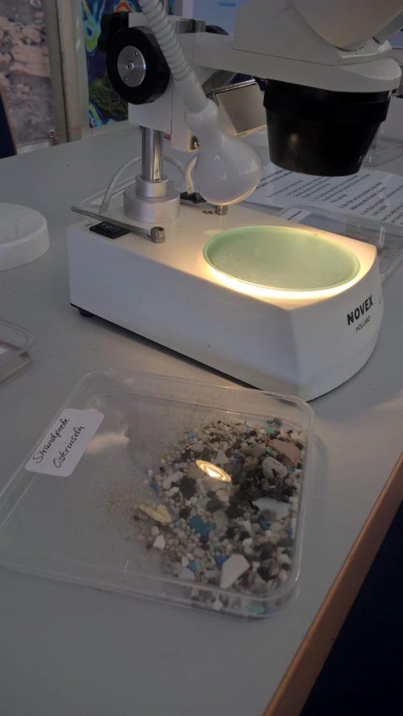 Aus verschiedenen Teilen der Erde können Sediment-Proben unter dem Mikroskop untersucht werden. Photo: Jill Alina Koenig