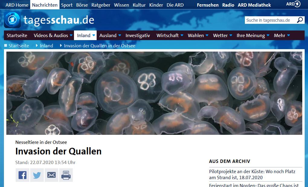 Screenshot vom verlinkten Artikel auf tagesschau.de