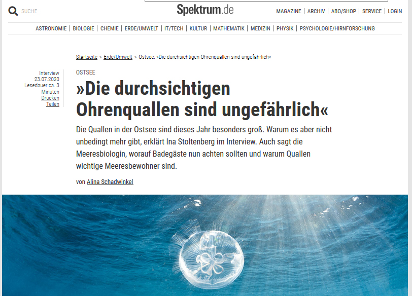 Screenshot vom verlinkten Artikel auf spektrum.de
