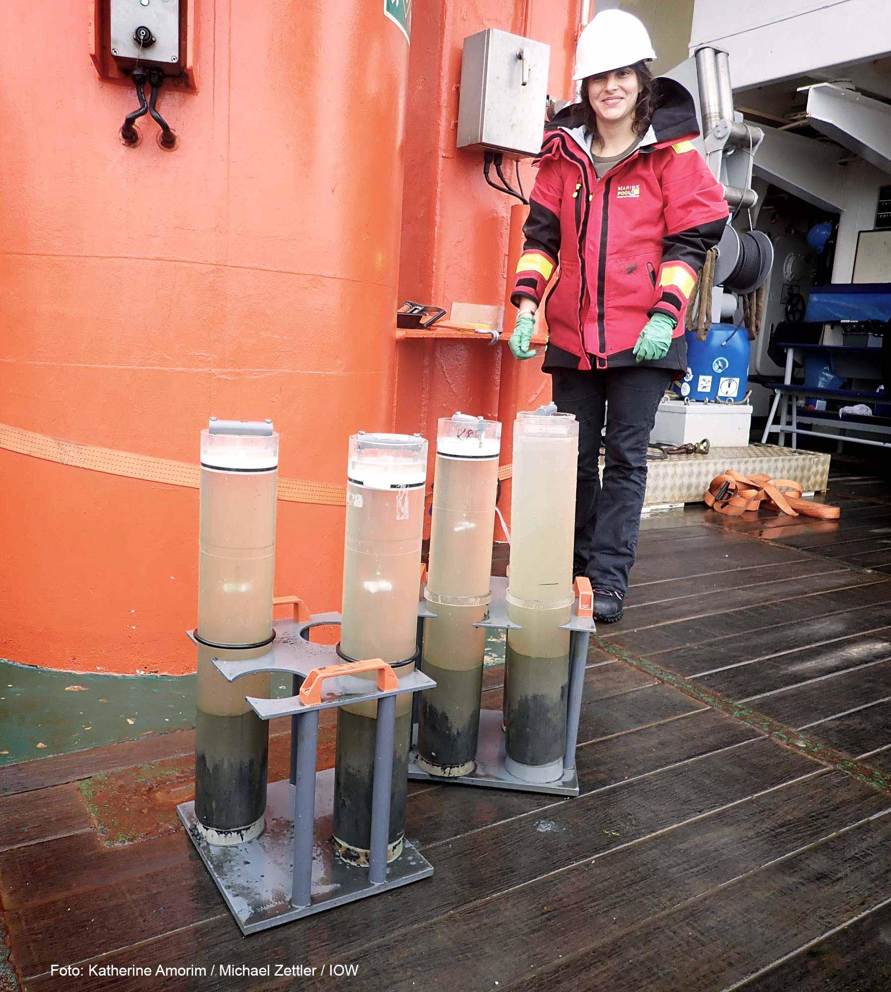 Zeigt das Aussehen von Sedimentproben