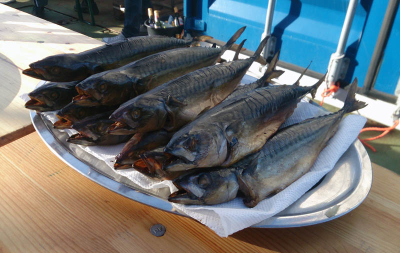 Von der Mannschaft geräucherte Makrelen stehen zum Verzehr bereit. Pichture: Armin Form, GEOMAR