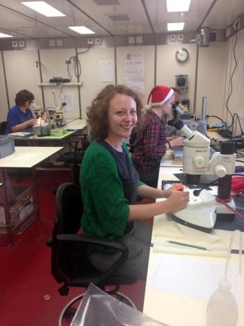 Beim Sortieren einer Probeim Labor / Sorting a sample in the lab. ©Marina Malyutina