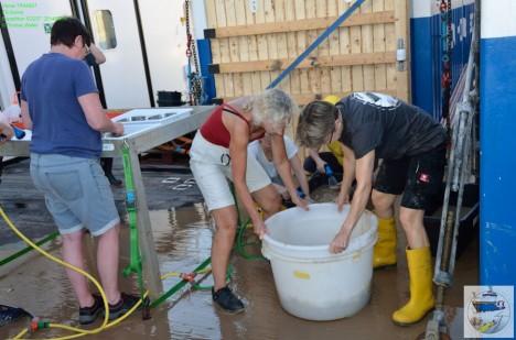 Waschen der Tiefseeprobe aus 8338 m / Washing the sample from 8338 m. ©Thomas Walter